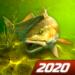 My Fishing World – Realistic fishing MOD