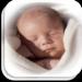 Desarrollo del Bebé 👶 MOD