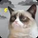 Grumpy Cat Weather MOD