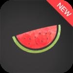 Melon VPN – Unblock Free Wifi Proxy VPN MOD