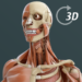 Visual Anatomy 3D | Human MOD